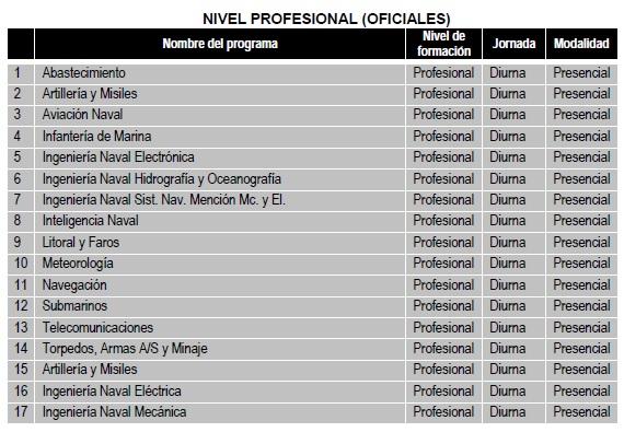 nivel_profesional_oficiales_07may2018