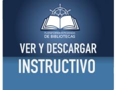 instructivo_piba_jun2018